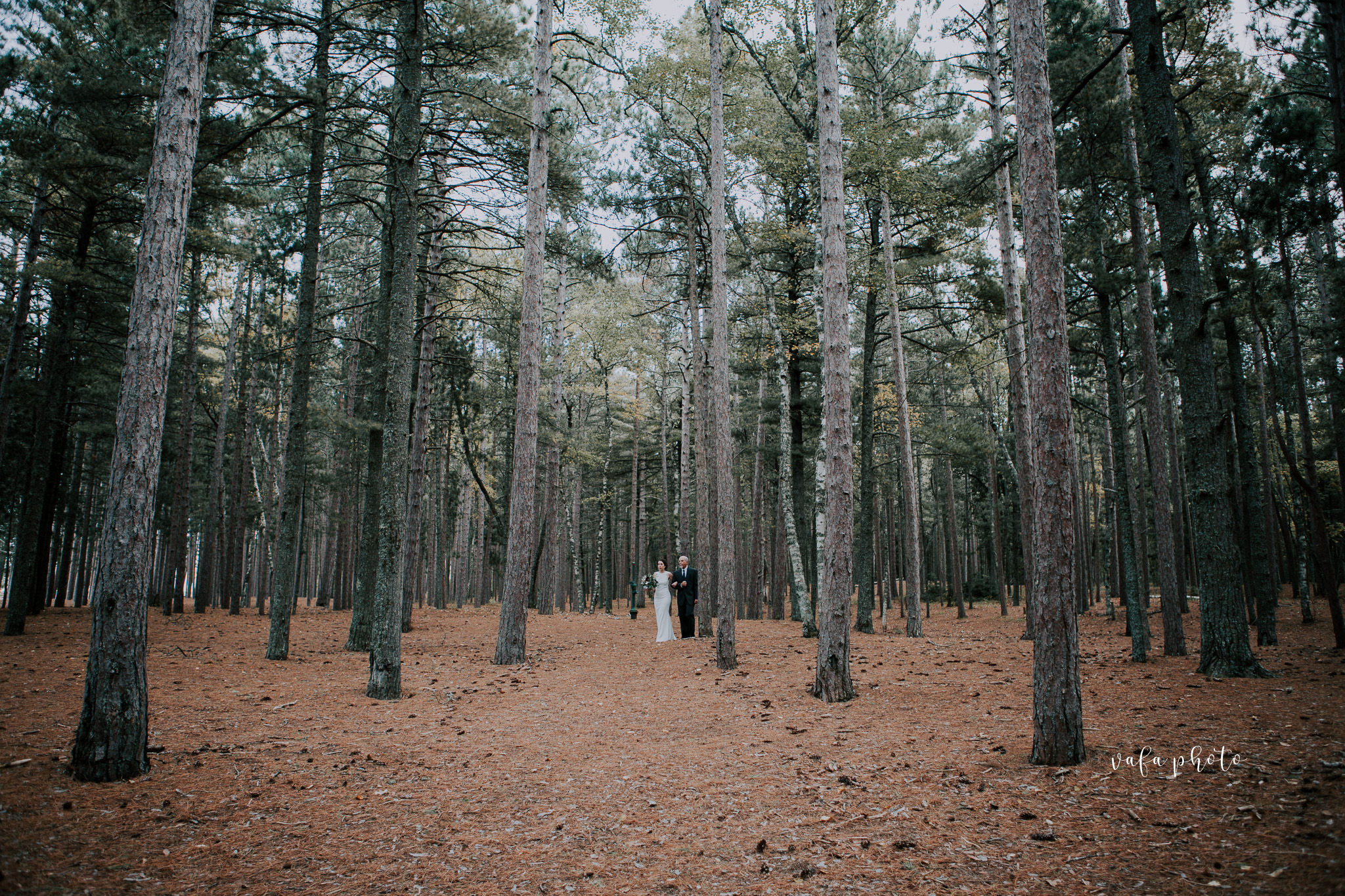 Little-Presque-Isle-Michigan-Wedding-Kim-Kyle-Vafa-Photo-181.jpg