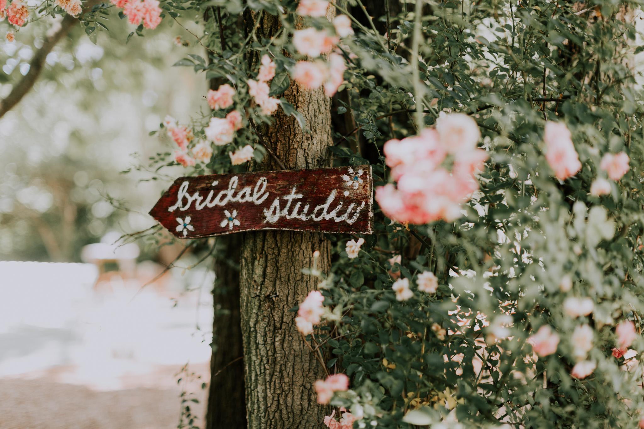 Blue-Dress-Barn-Michigan-Wedding-April-Seth-Vafa-Photo9.jpg