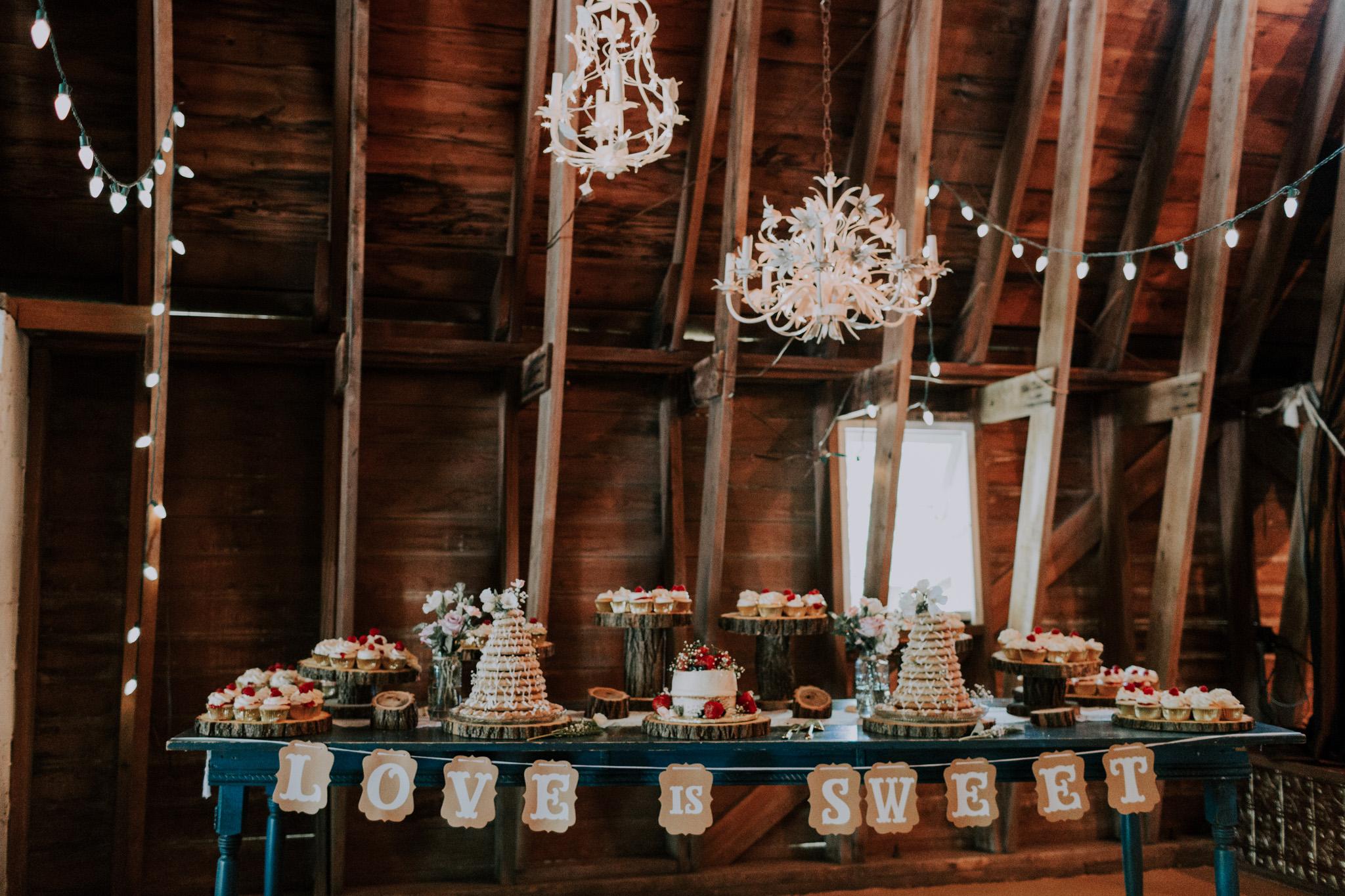 Blue-Dress-Barn-Michigan-Wedding-April-Seth-Vafa-Photo661.jpg