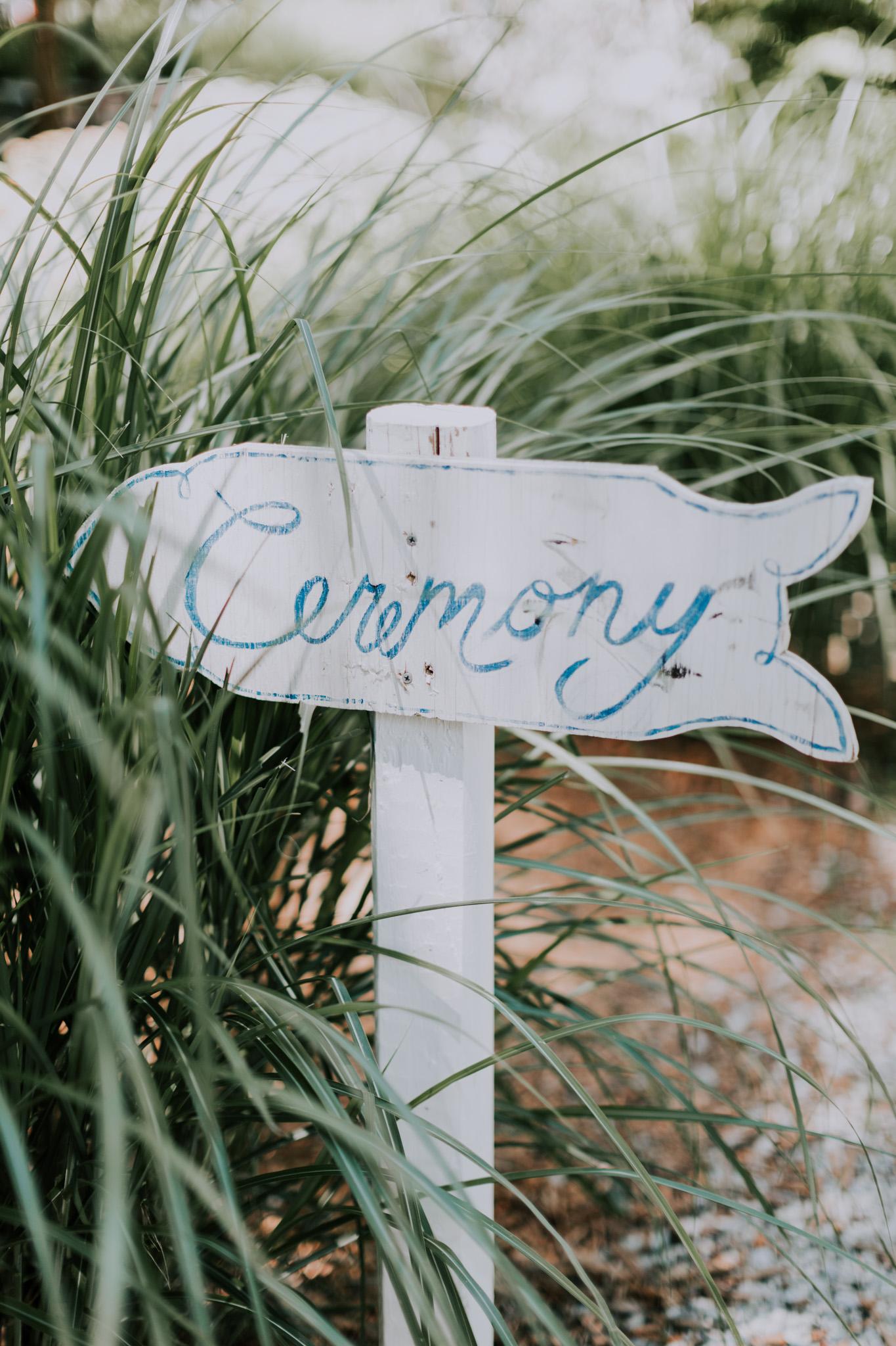 Blue-Dress-Barn-Michigan-Wedding-April-Seth-Vafa-Photo441.jpg