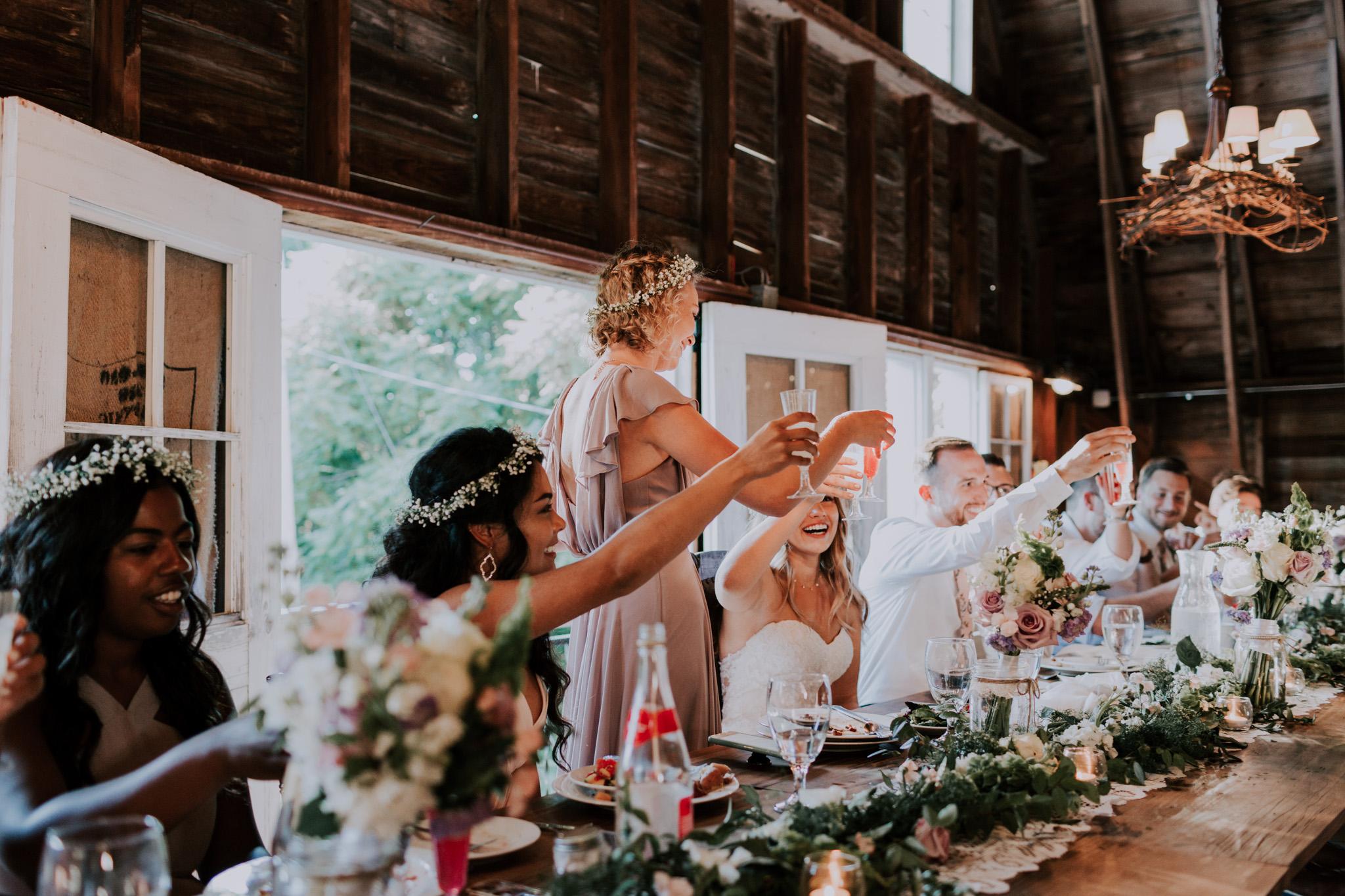 Blue-Dress-Barn-Michigan-Wedding-April-Seth-Vafa-Photo737.jpg