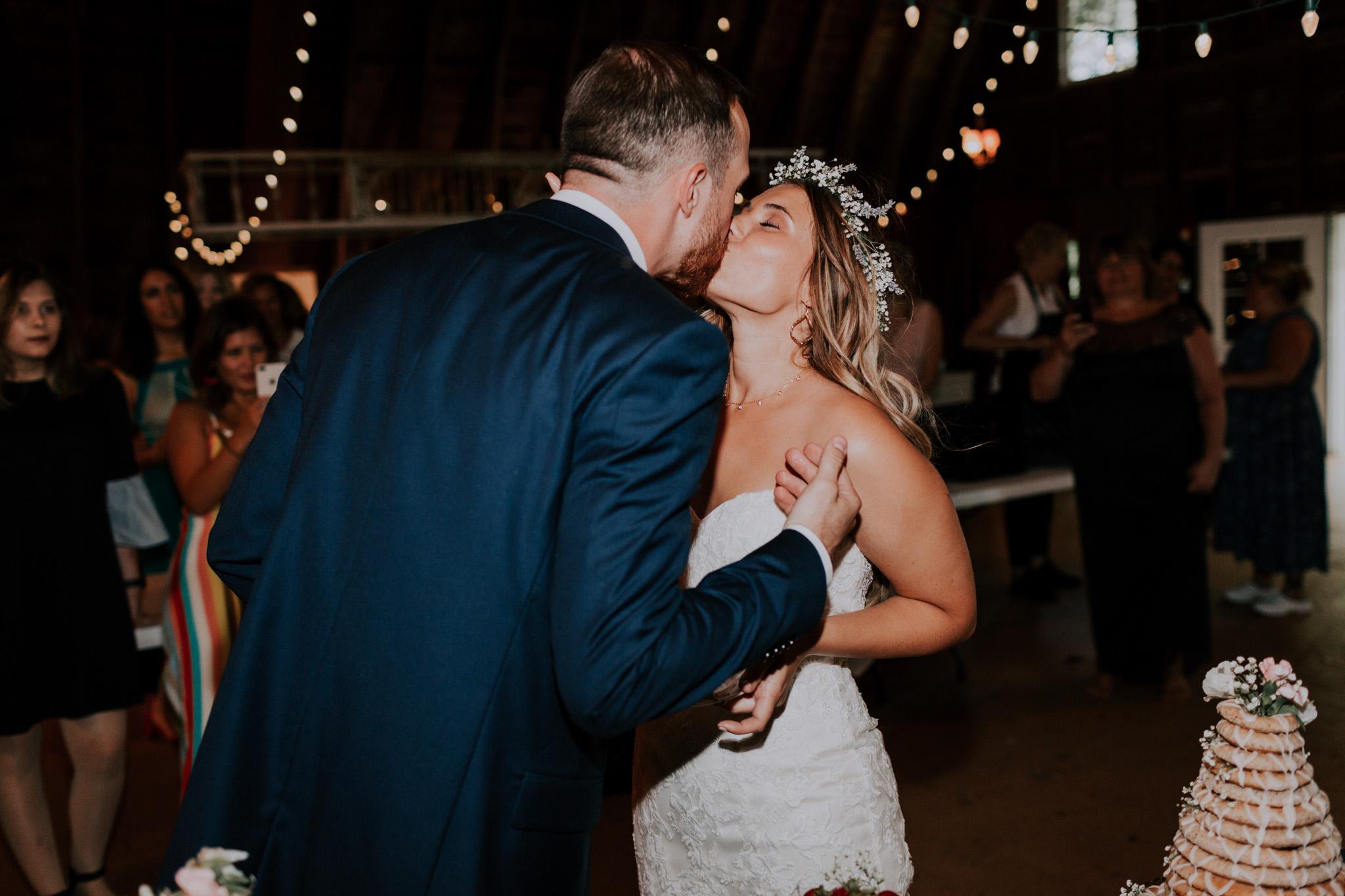 Blue-Dress-Barn-Michigan-Wedding-April-Seth-Vafa-Photo772.jpg