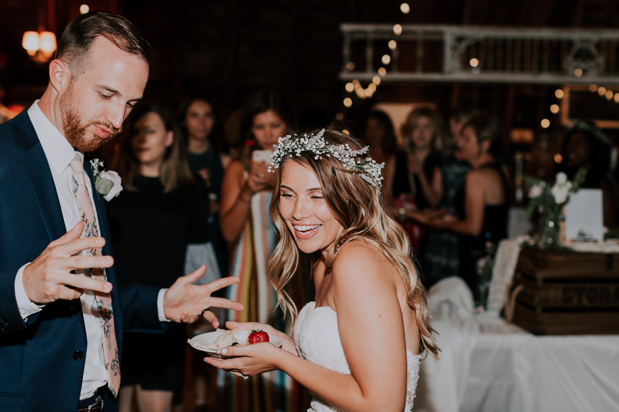 Blue-Dress-Barn-Michigan-Wedding-April-Seth-Vafa-Photo776.jpg