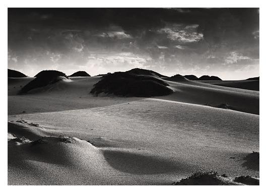 Dunes after Rain (Central Coast)