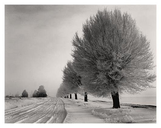 Dorris in Winter
