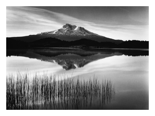 Tule and Mount Shasta (only available with new book)