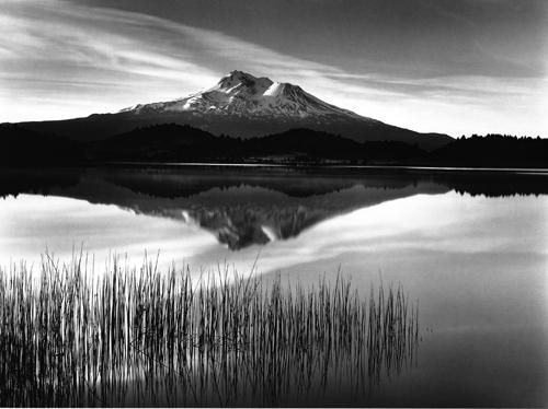 Tule and Mt. Shasta