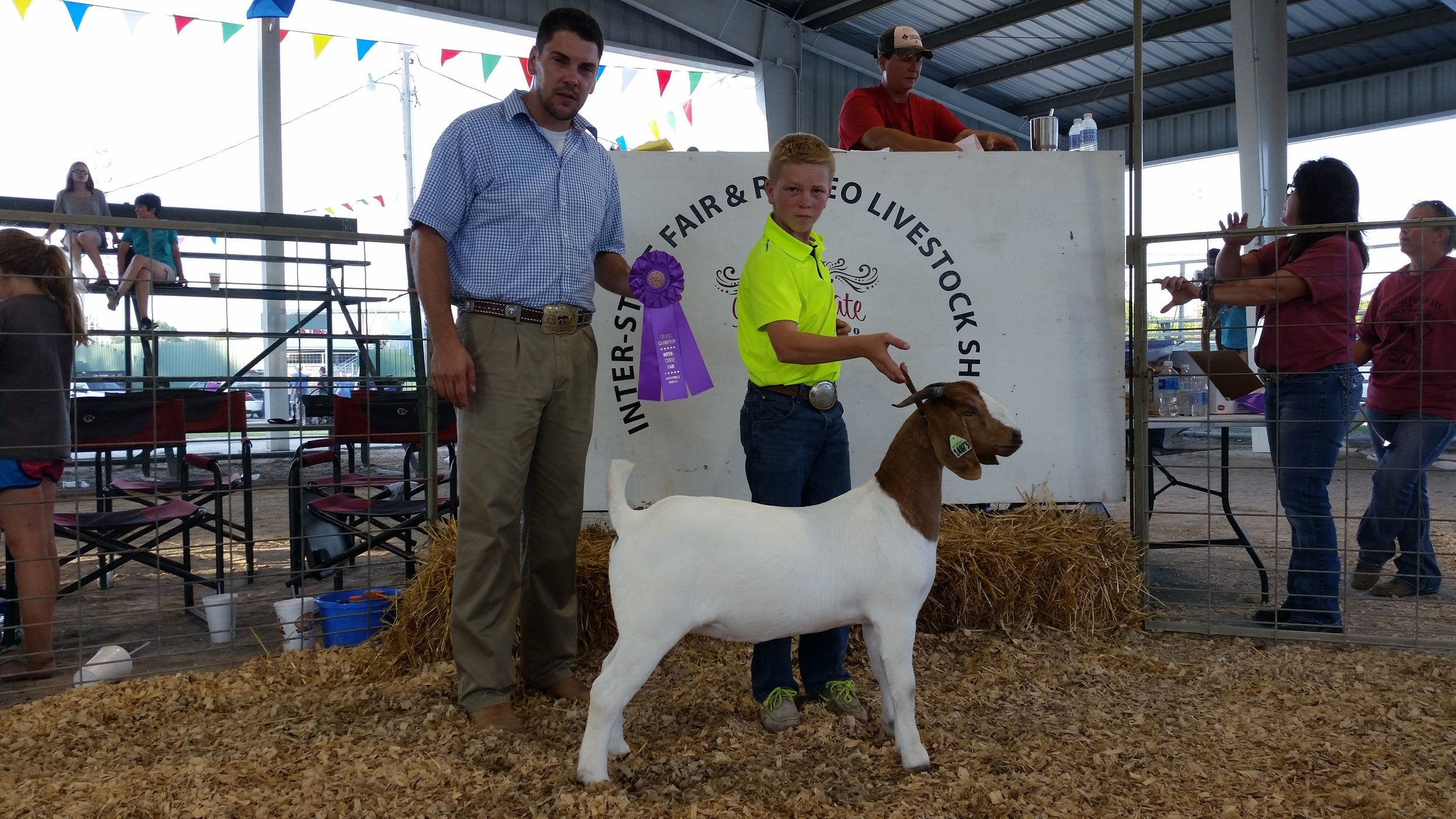 2016 Grand Champion Breeding Doe Coffeyville Interstate Fair (Fowler 2009 x Helms 3486 Doe)
