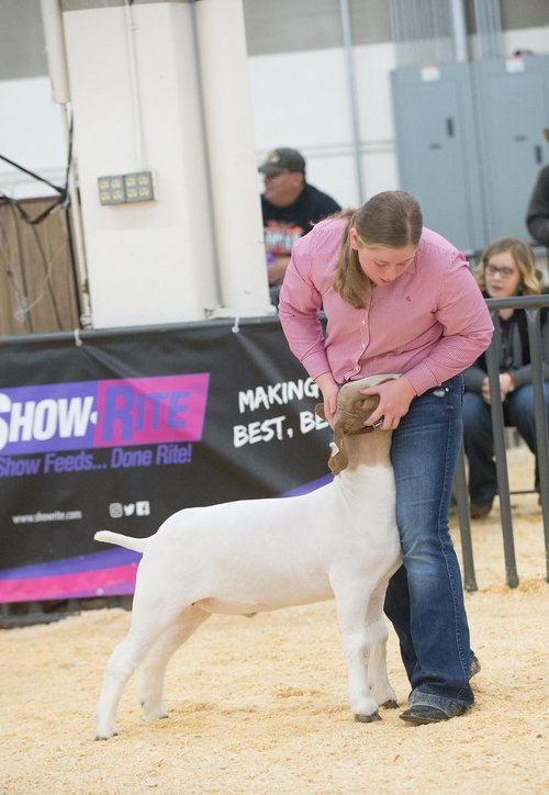 2017 Denver Stockshow