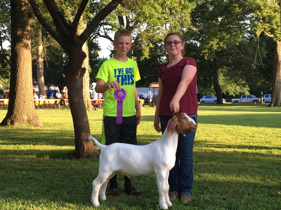 2017 Grand Champion Cherryvale Youth Fair