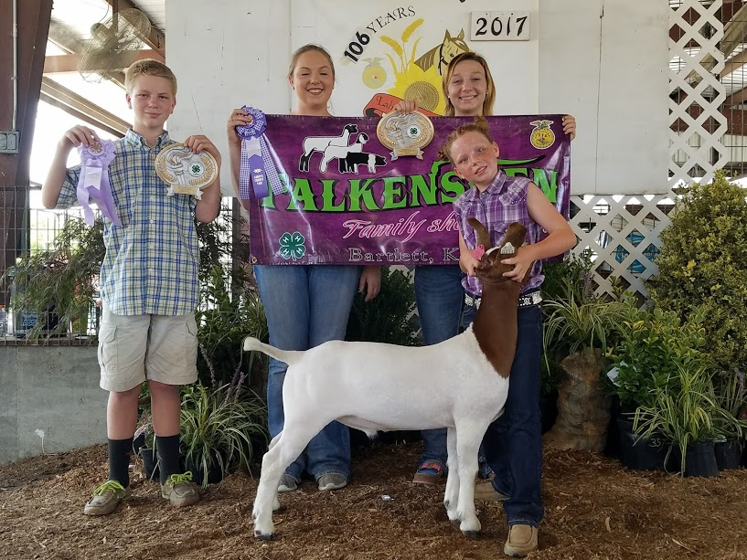 2017 Reserve Grand Champion Labette County Fair