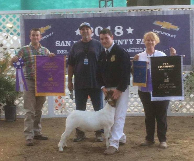 Overall Supreme Champion SanDiego County Fair.