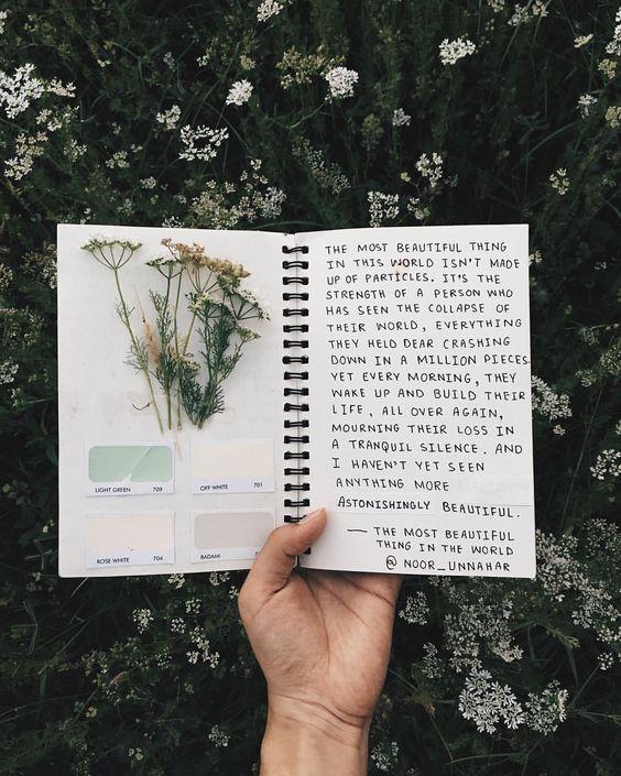 diario profumato