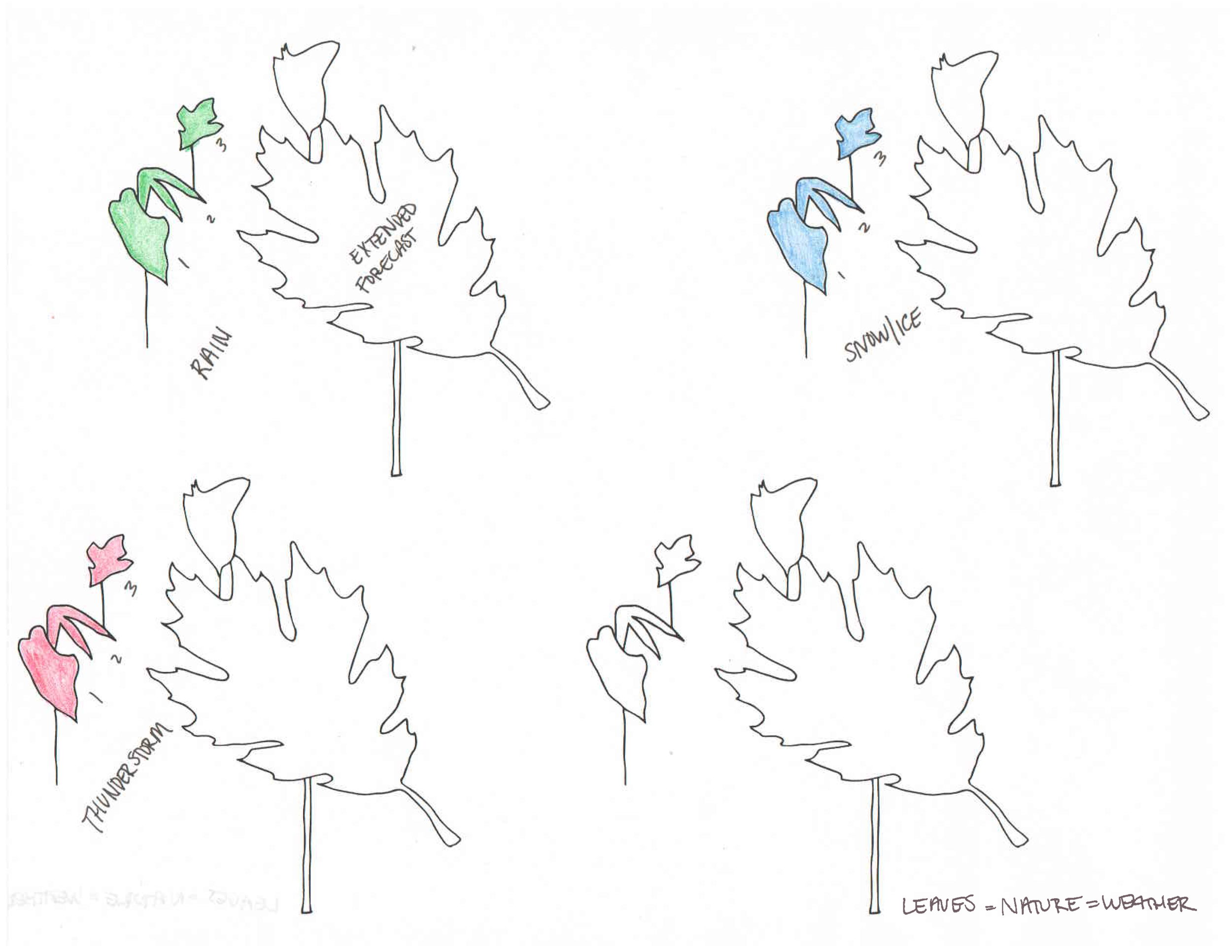 brainstorm-sketches-leaves.png