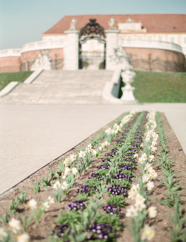 destination-wedding-vienna-austria-styled-schloss-hof-palace-highemotionweddings-nikolbodnarova (27).JPG