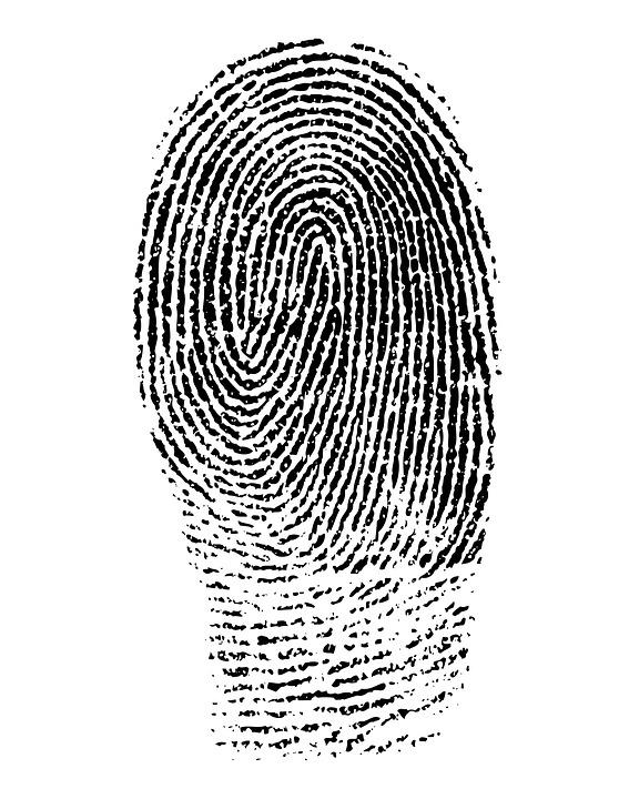 Finger Print.jpg