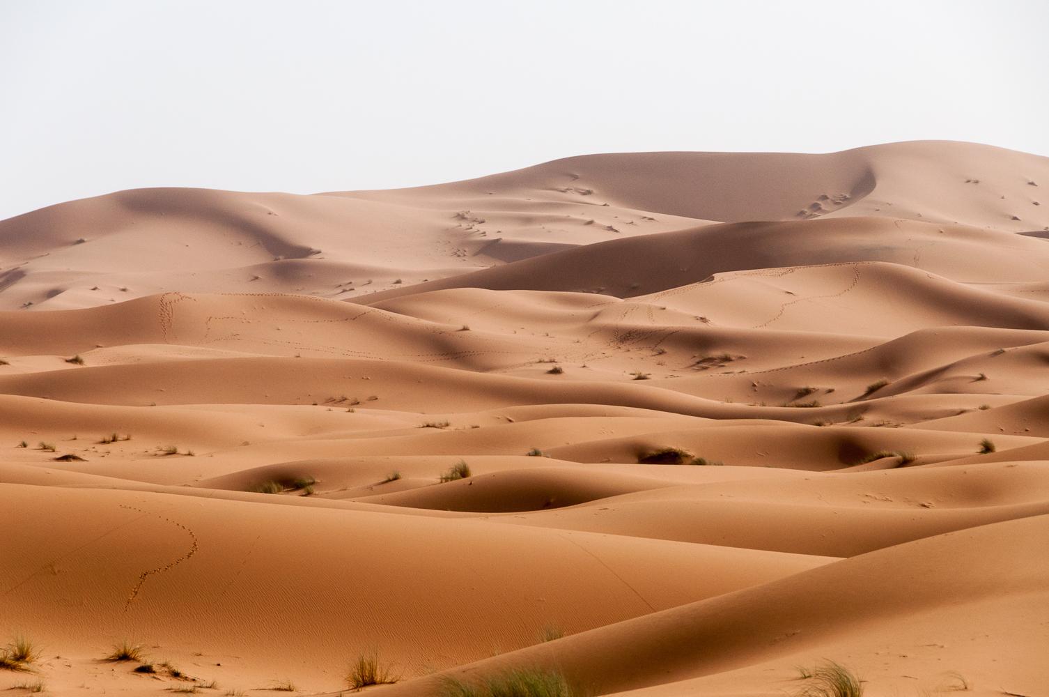 <h2>Morocco</h2><a href='/morocco'>Click to view</a>