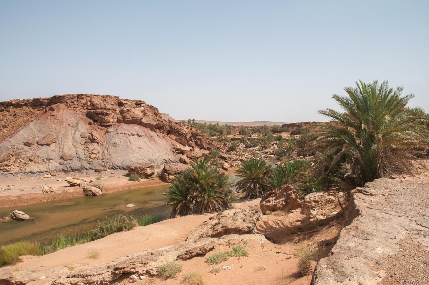 Safsaf Oasis-166.jpg