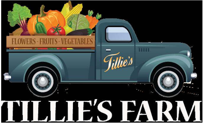 tillies-farm.png