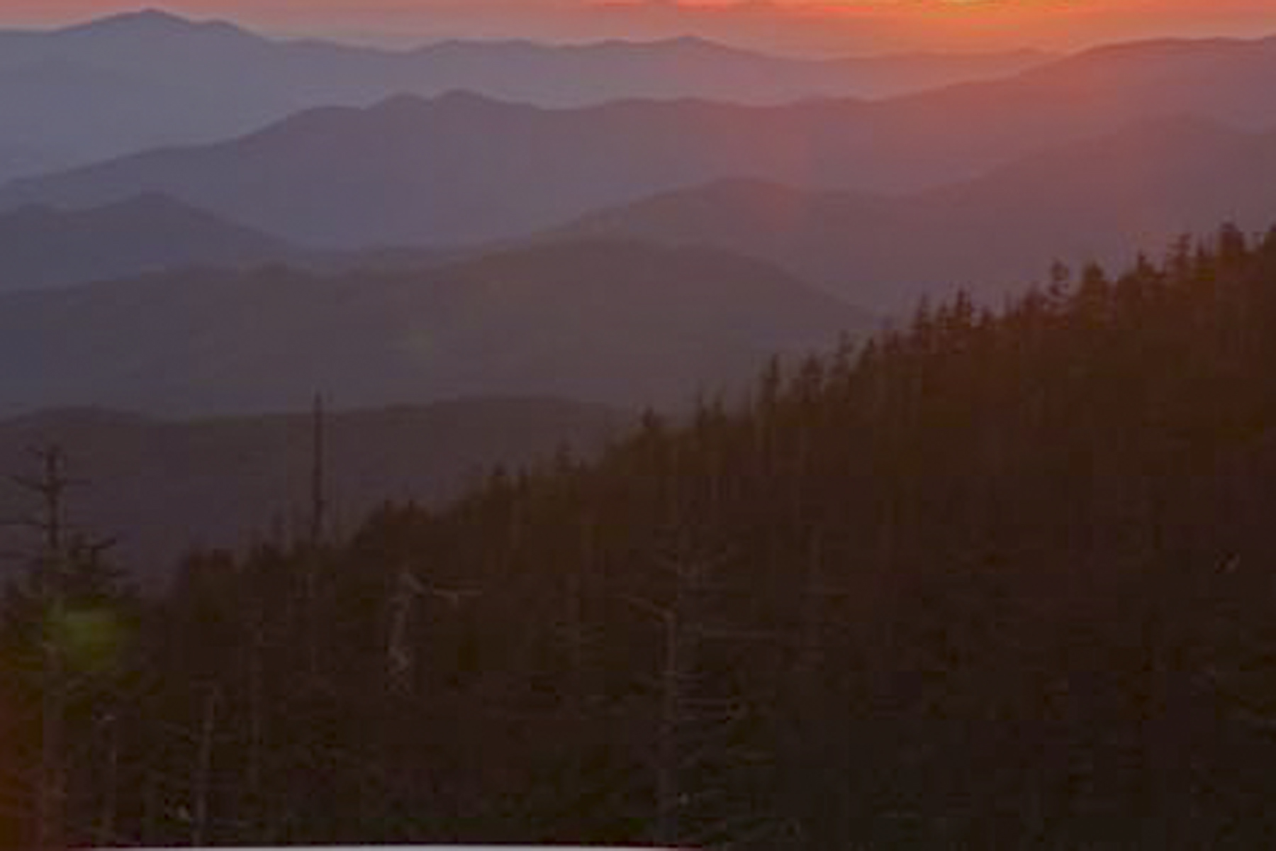 Sunrise looking over the Smokies!
