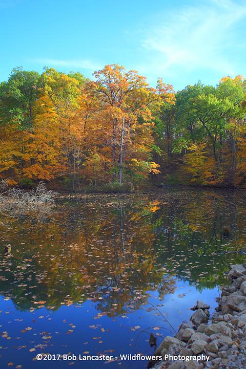 Fall 2017 Lake Macbride_img2960.jpg