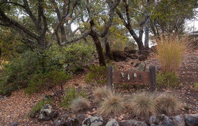 Sonoma County home site.jpg