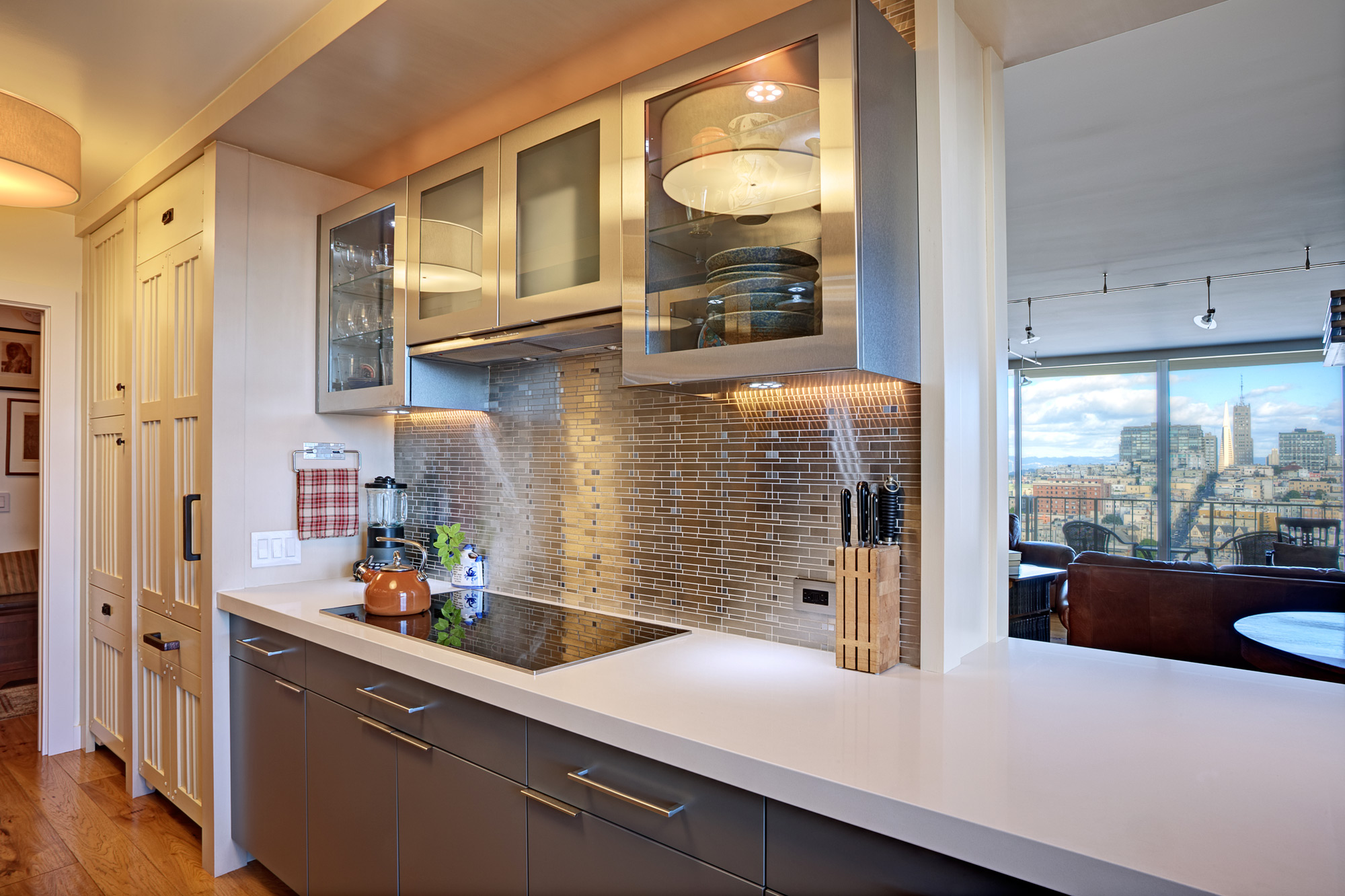 Kaplan-Architects-high-rise-interior-remodeled-kitchen-stainless-finishes.jpg