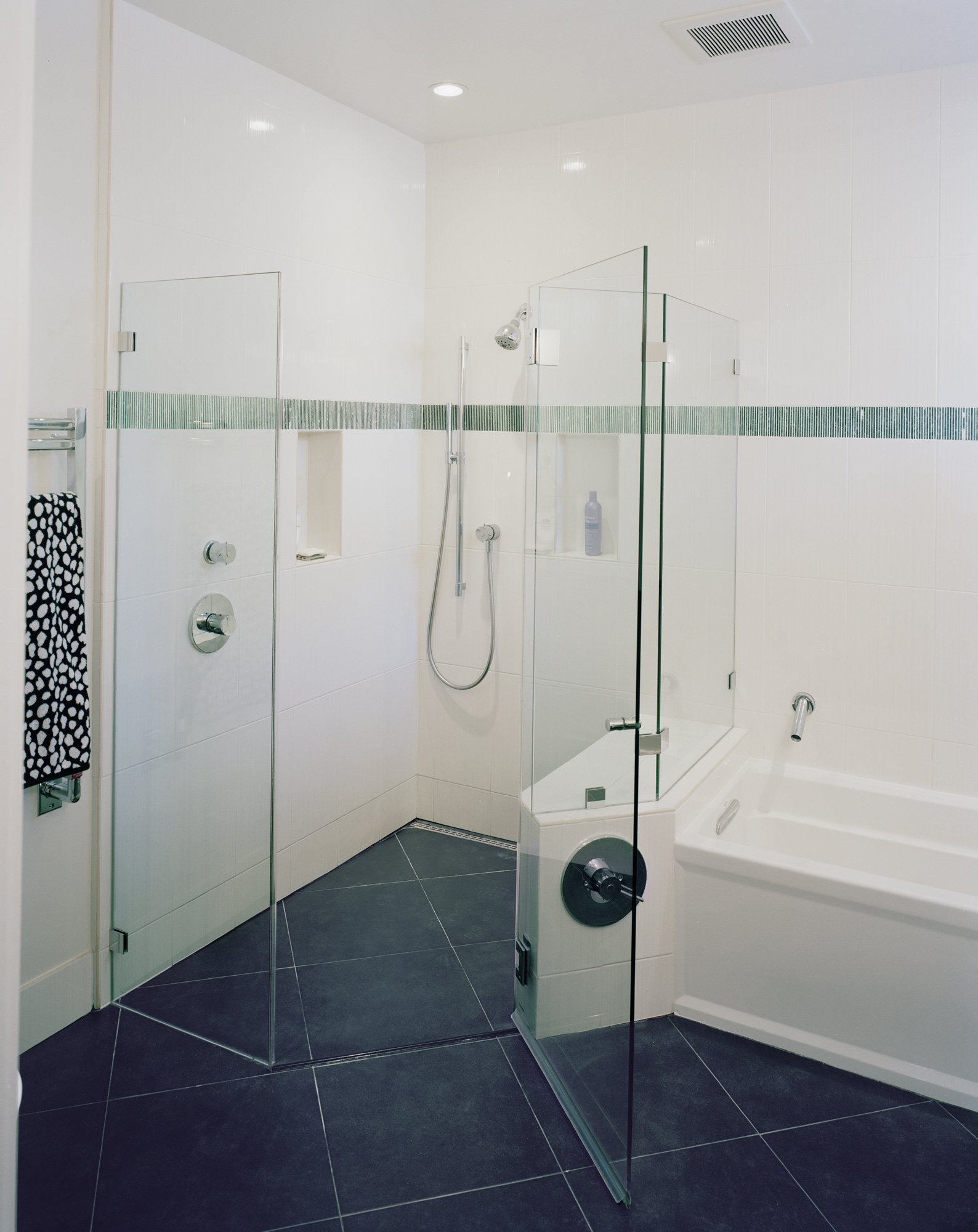 Kaplan-Architects-San Francisco-basement-remodel-shower.jpg