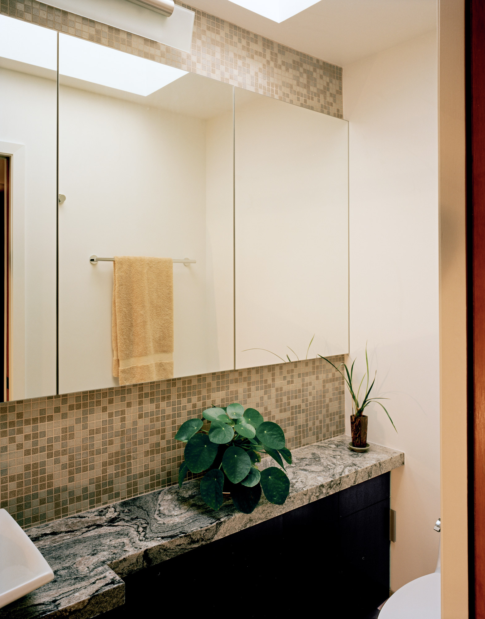 Kaplan-Architects-San Francisco-guest-bath-remodel-1.jpg