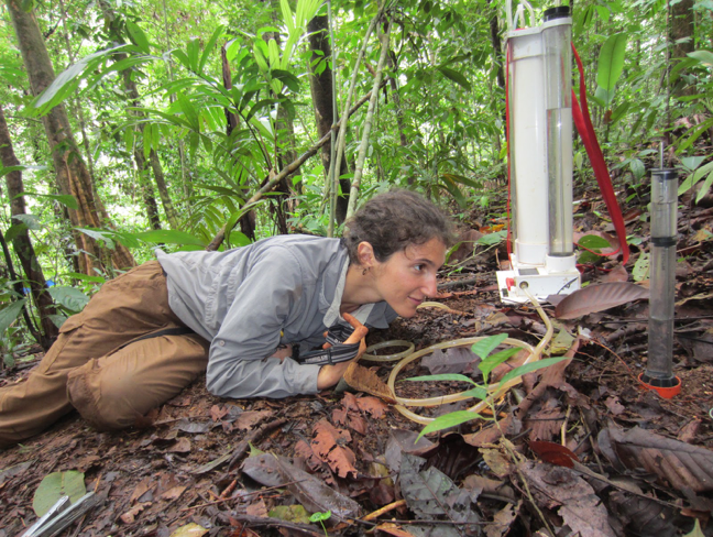 Measuring soil infiltration rates in Costa Rica