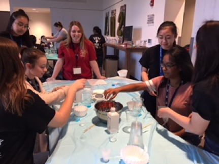 High school girls being taught by college girls how to extract DNA from flowers.