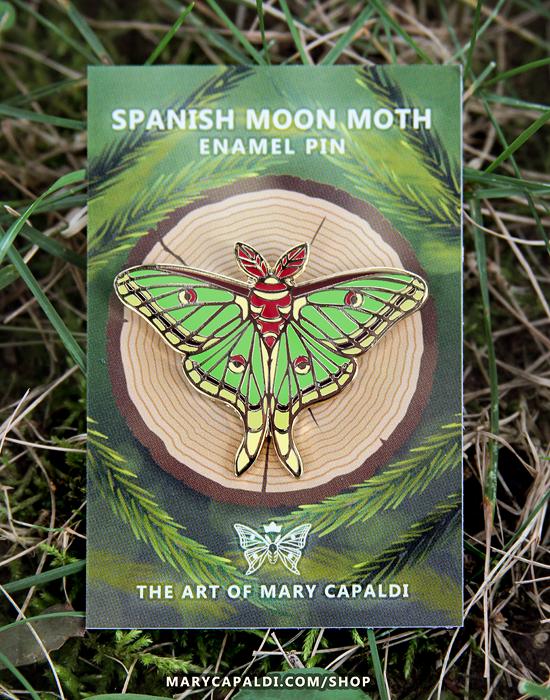 Mary Capaldi insect art
