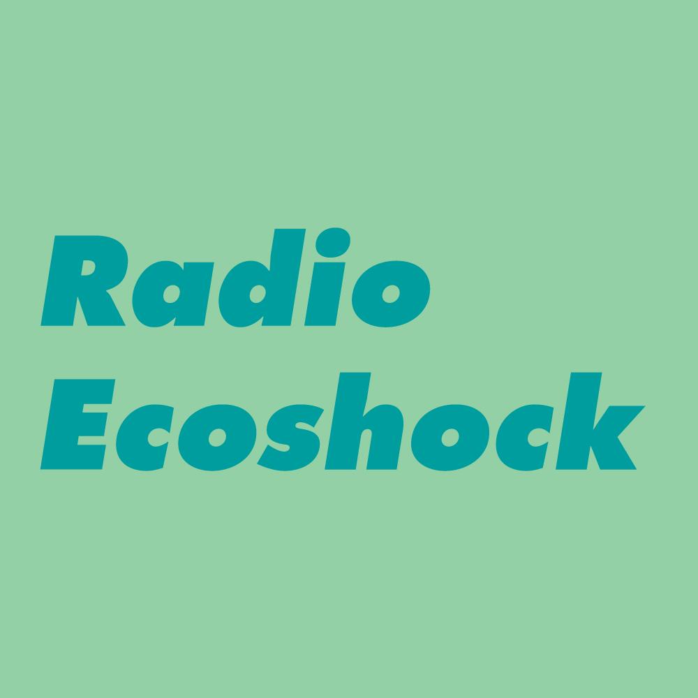 Radio-Ecosock.png