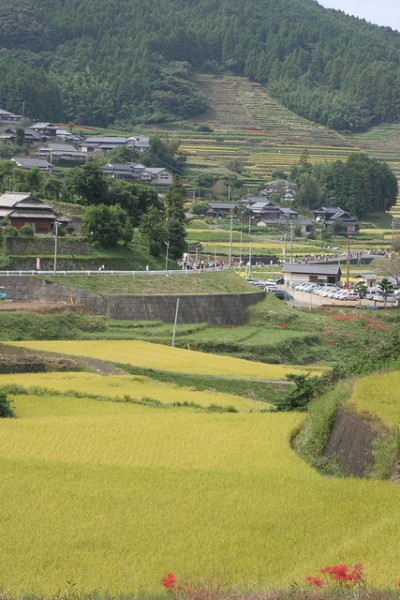 Ah, the wonderful inaka -- or Japanese countryside.