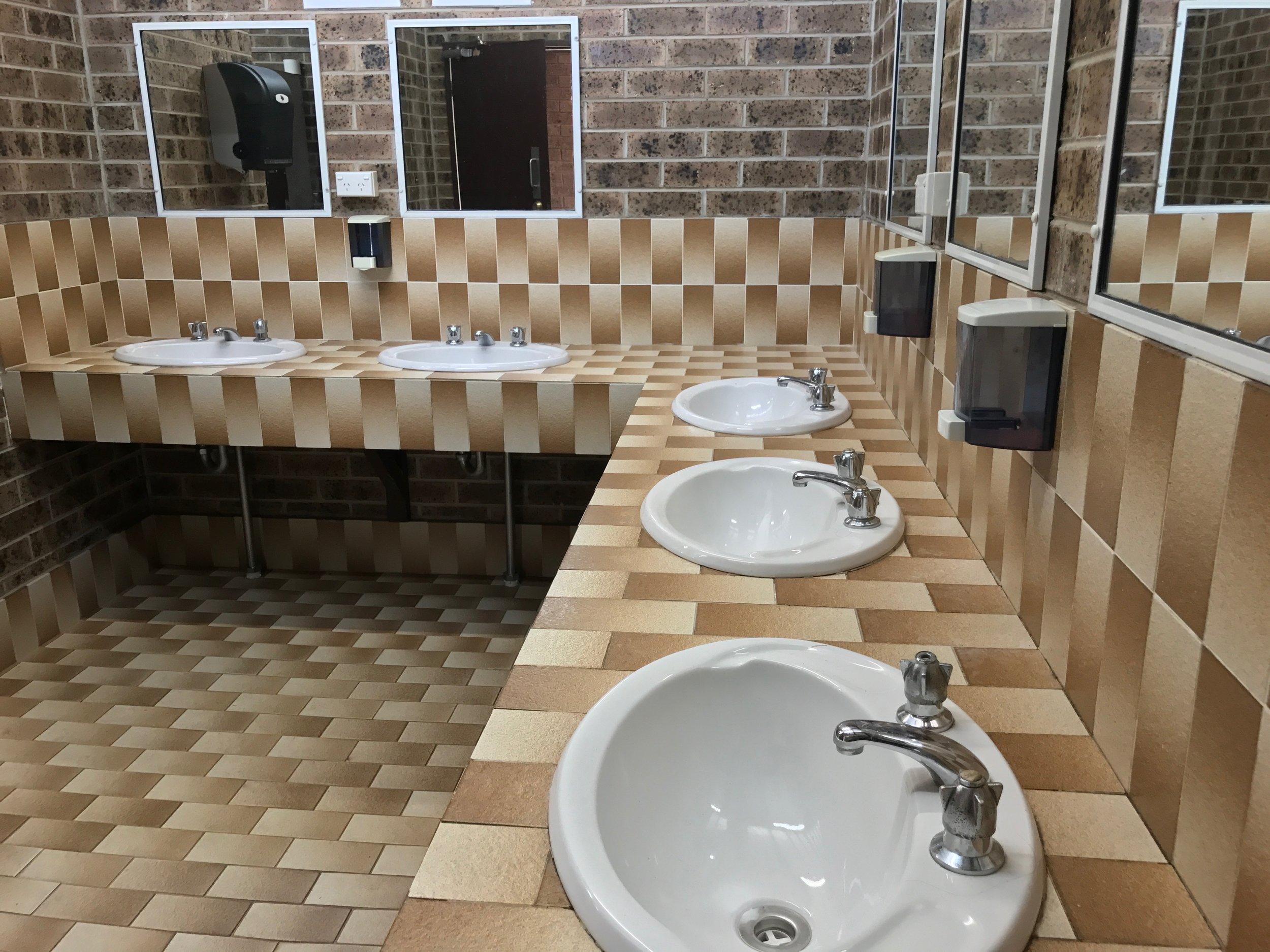 Amenity block basins
