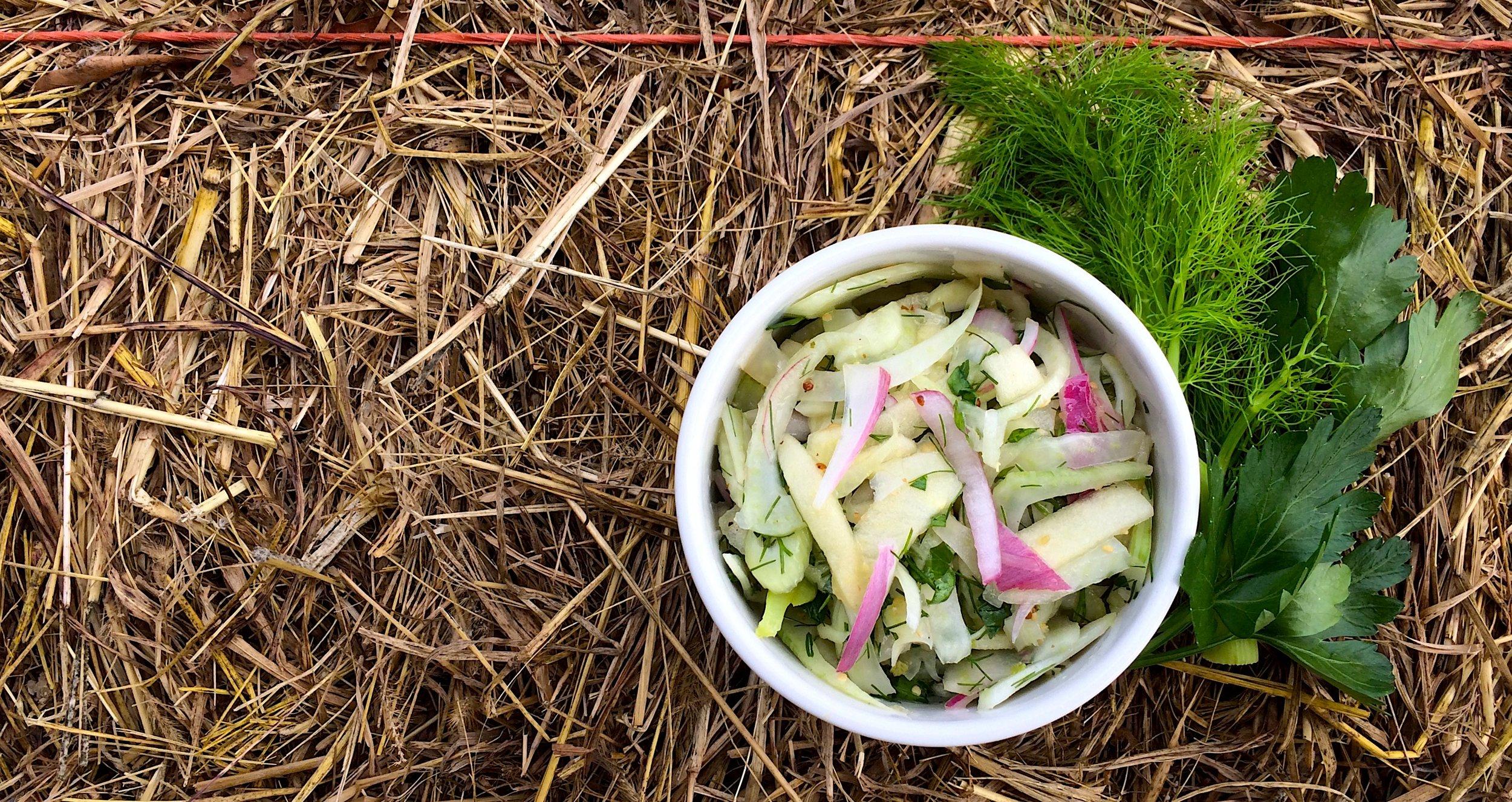 fennel apple slaw banner.jpg