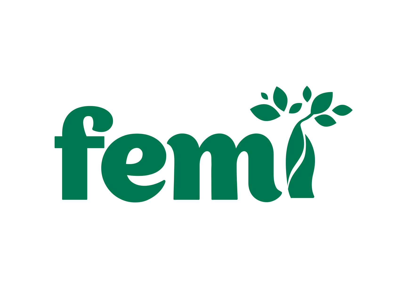 Femi • logo design