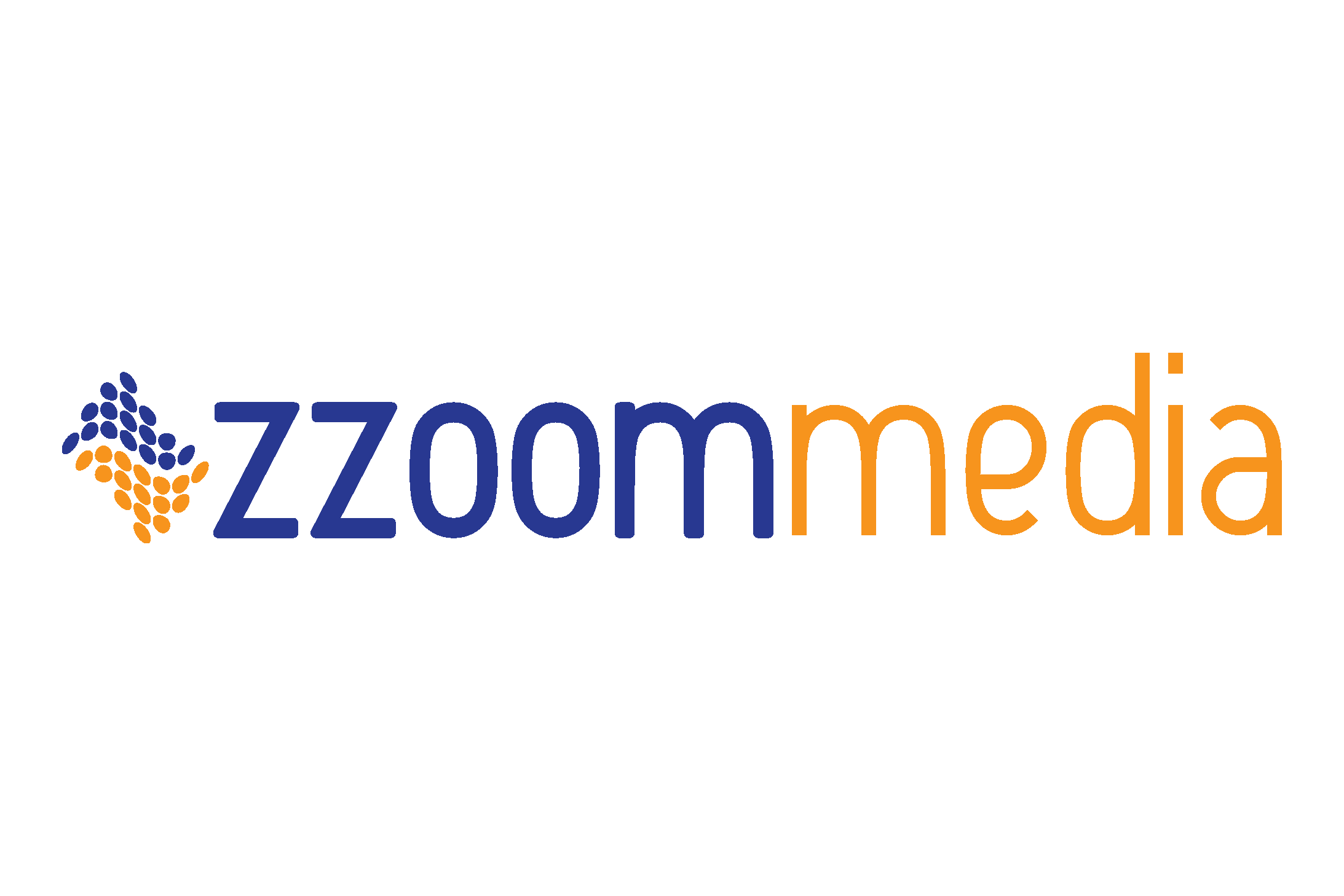 ZzoomMedia.png