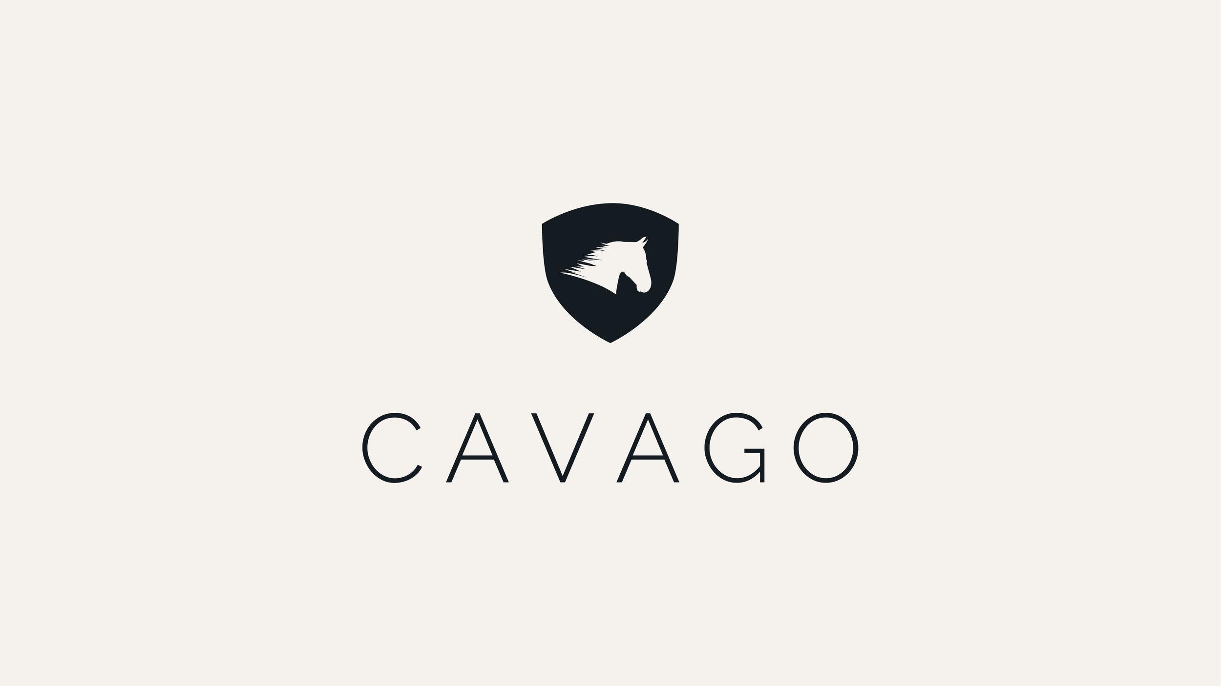 Cavago Website3.jpg