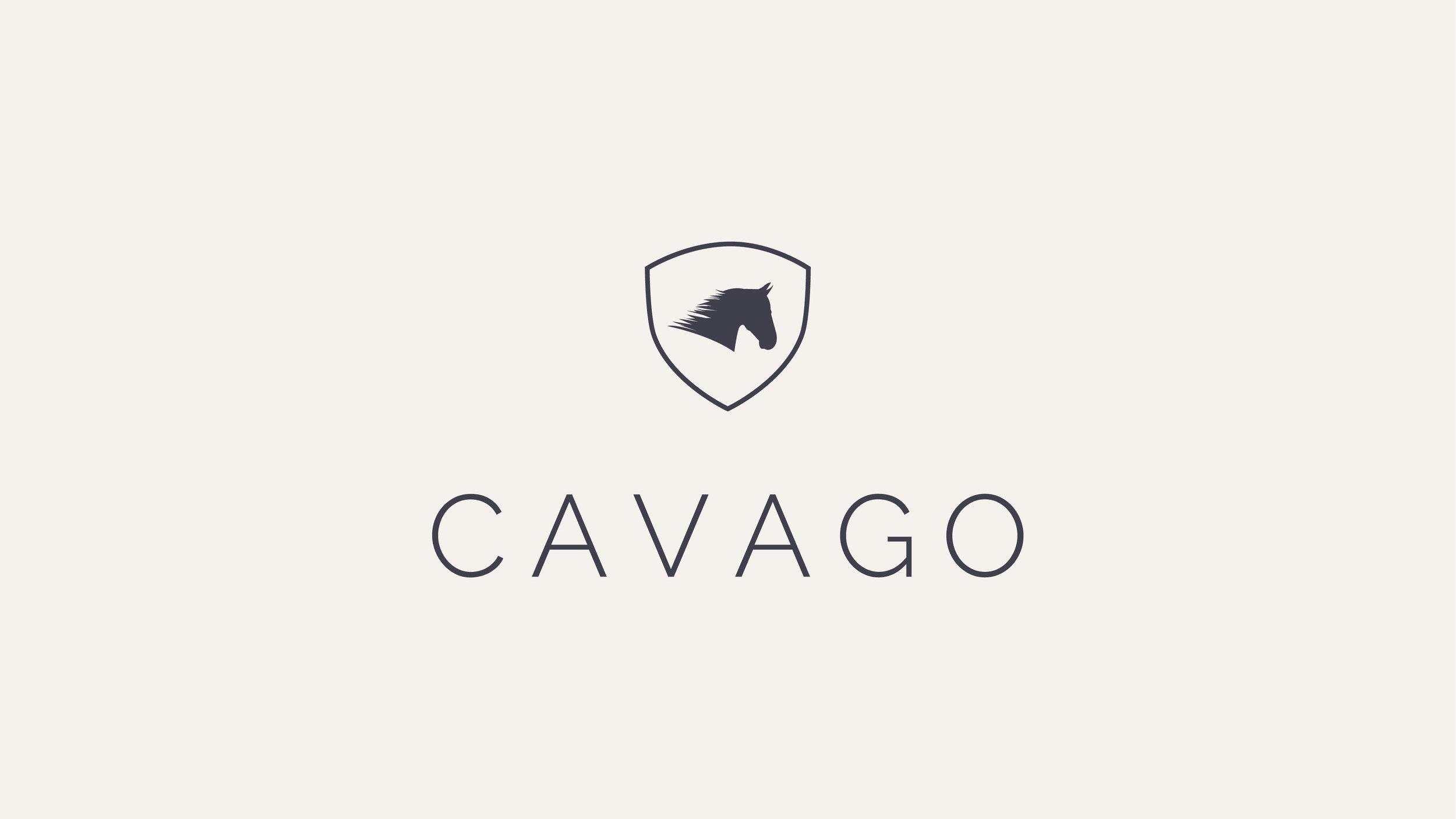 Cavago Website4.jpg