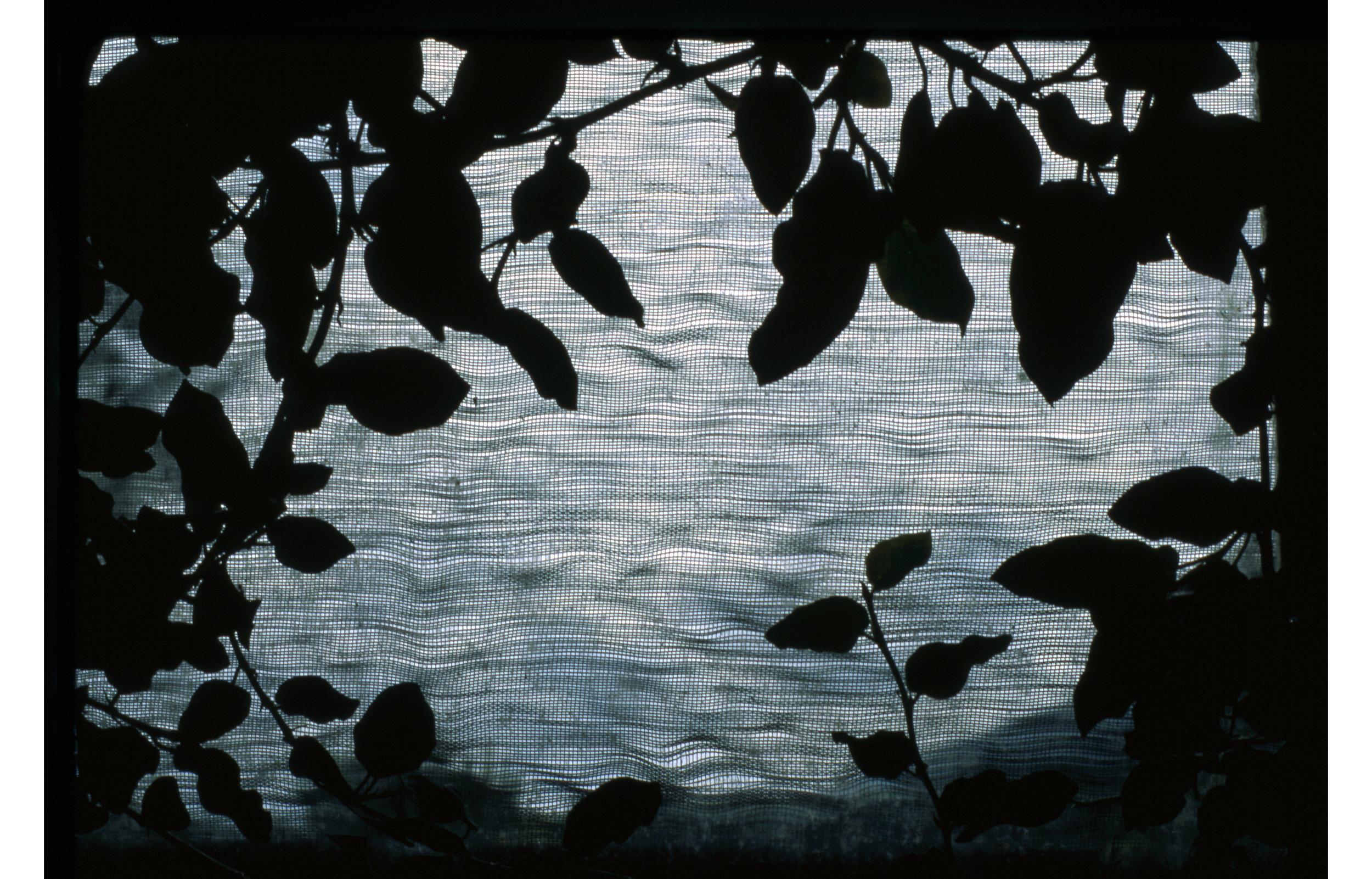 Untitled-135.jpg
