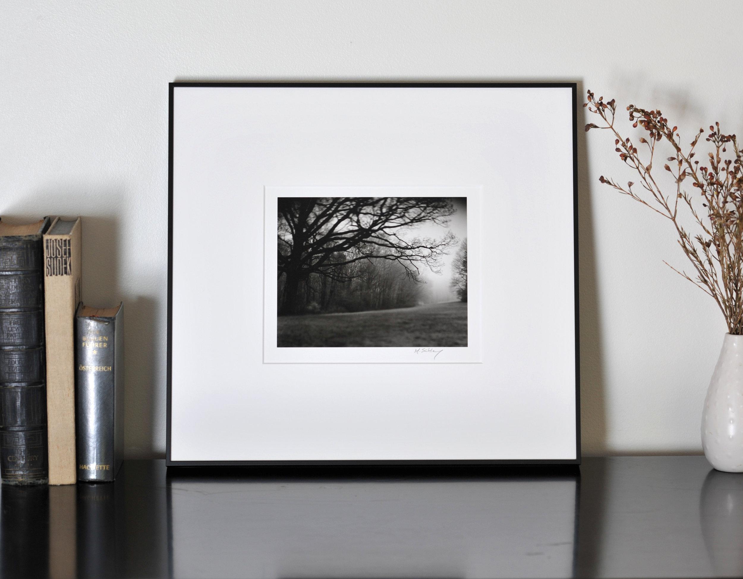 Framed Gelatin Silver Print