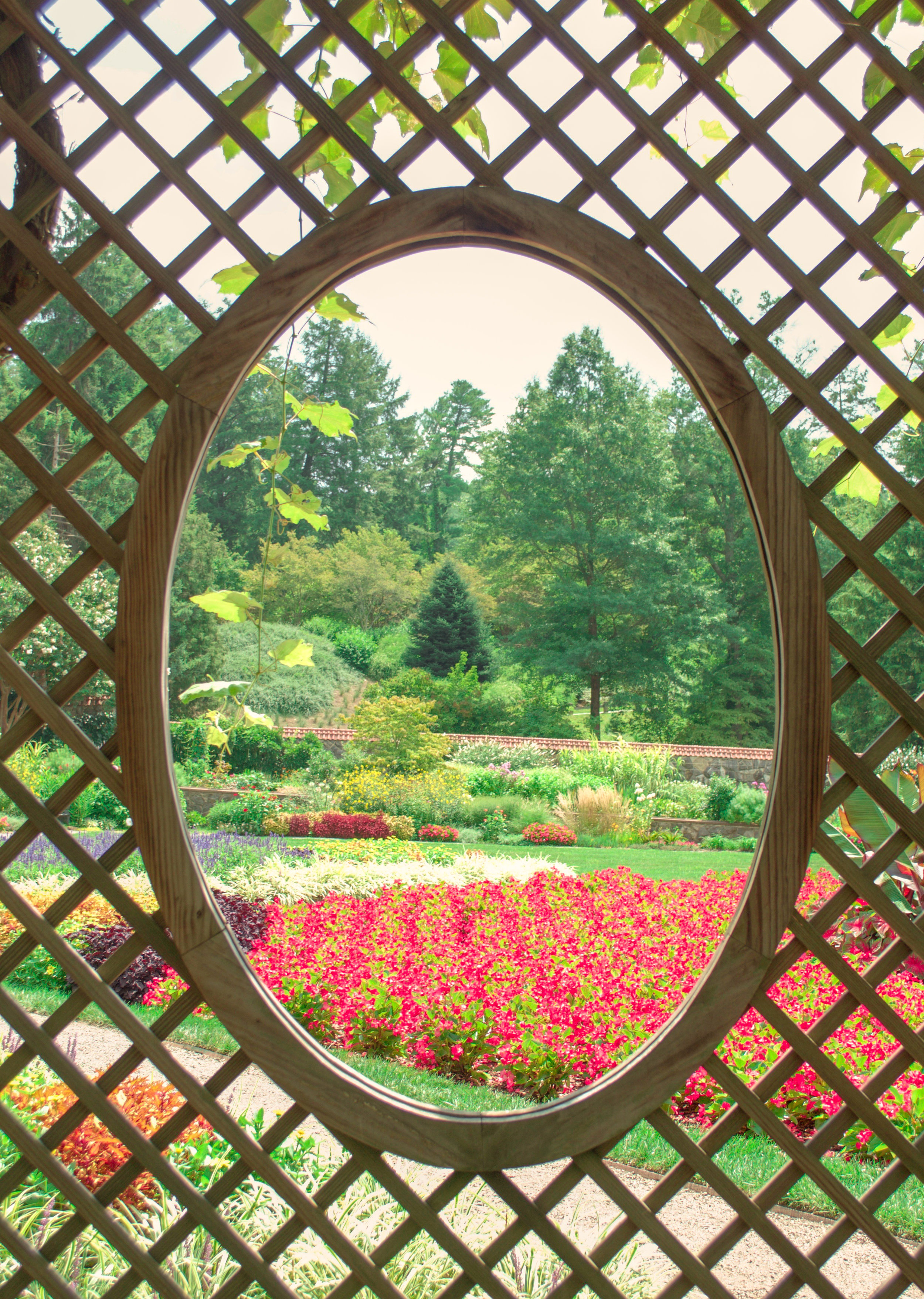 Garden_.jpg