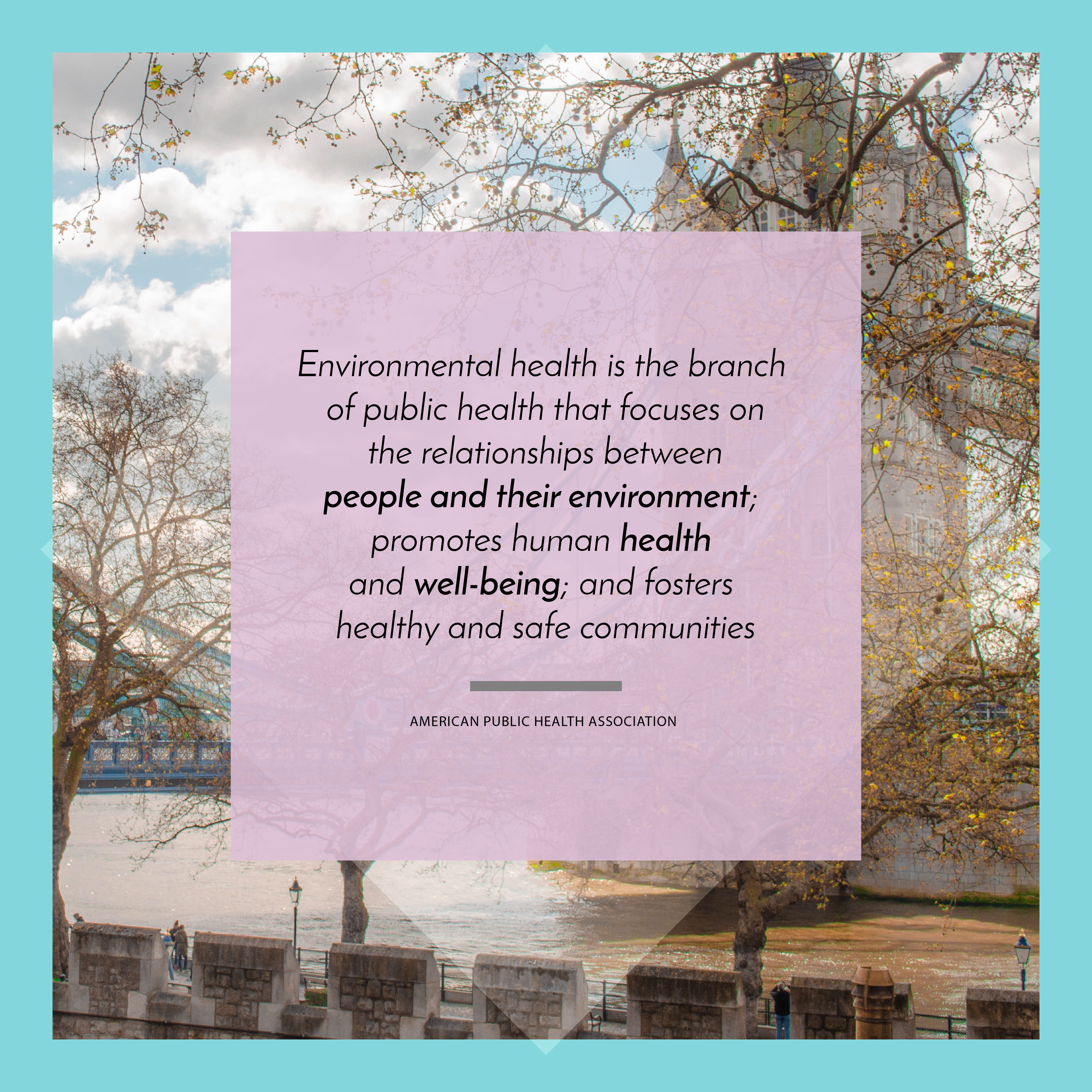Environmental Health Definition-01.png