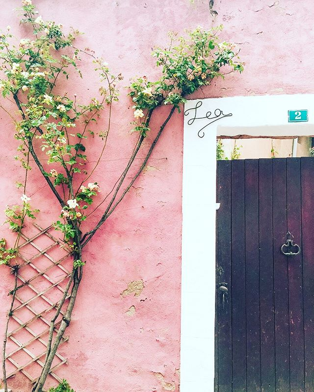 "One of my favorite parts of traveling is looking at architecture and the way locals design and set up their homes. I took this picture during my time in Provence, France.  I always wondered what's behind the door!! 🤔 a gorgeous courtyard? What do you think? ⠀ ⠀ Also this quote got me inspired right now: 👇⠀ ""We keep moving forward, opening new doors, and doing new things, because we're curious and curiosity keeps leading us down new paths."" - Walt Disney⠀ ⠀ ⠀ ⠀ *⠀ *⠀ *⠀ *⠀ *⠀ #designtravel #designtravels #architecture_view #architecturelove #travelarchitecture #provence #provencestyle #provencefrance #curbappeal #designtravels #mytravels #door #provence #france #homesoffrance #pinkwednesday #wednesdaymotivation"