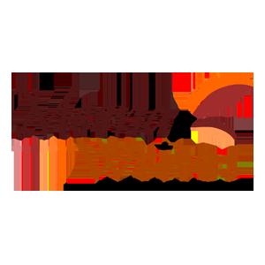 Meena Writes