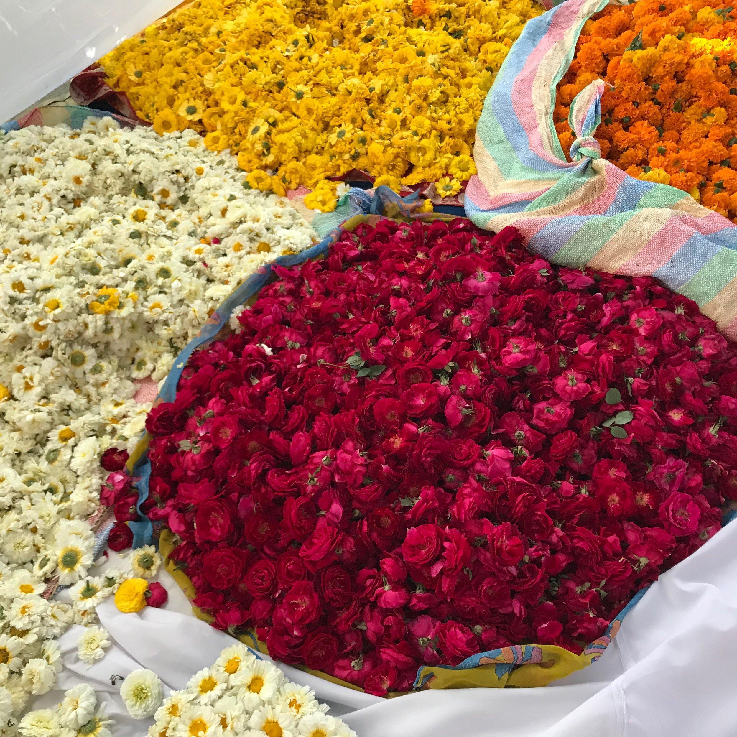 flower square.jpg