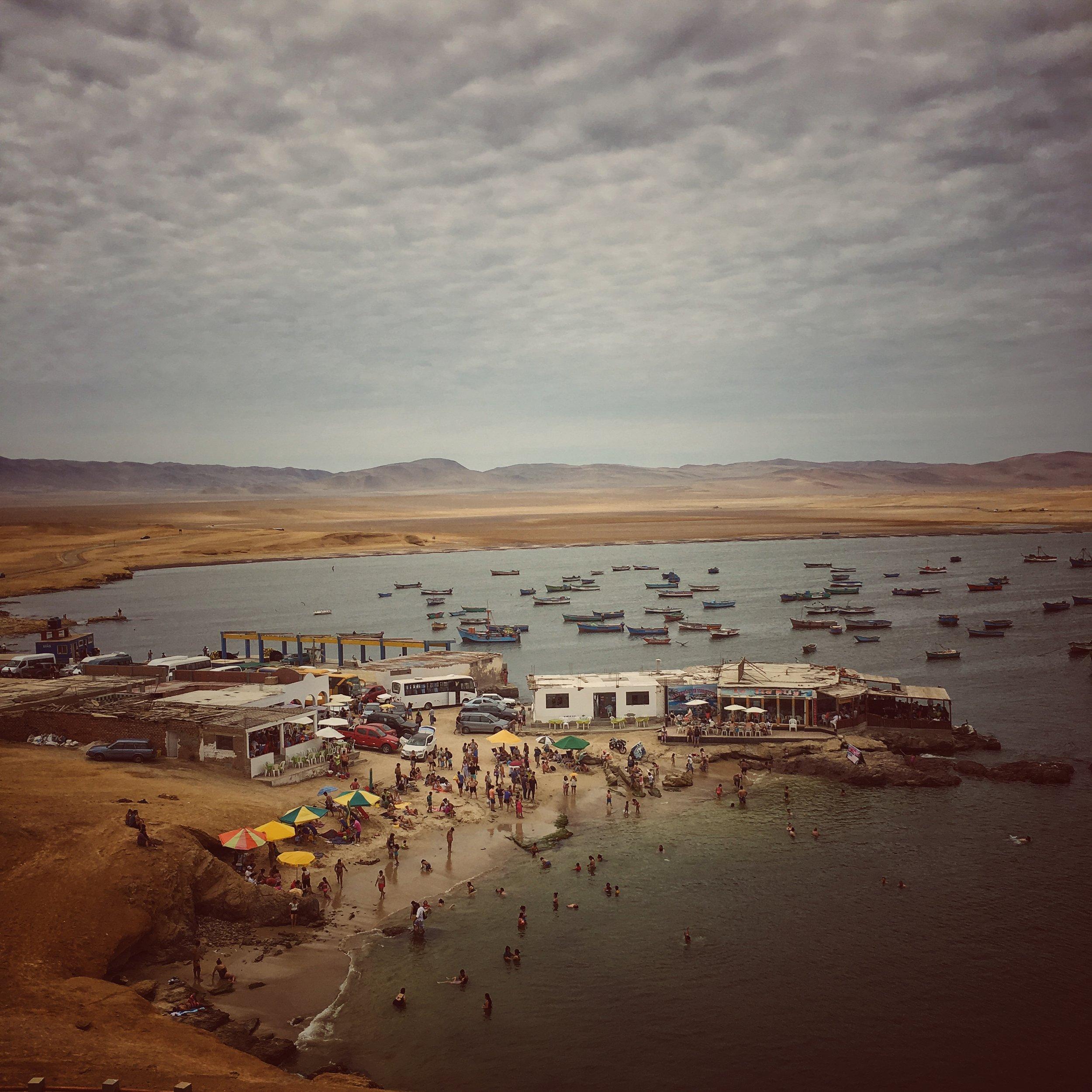 sunday arvo beach & ceviche : reserva nacional de paracas