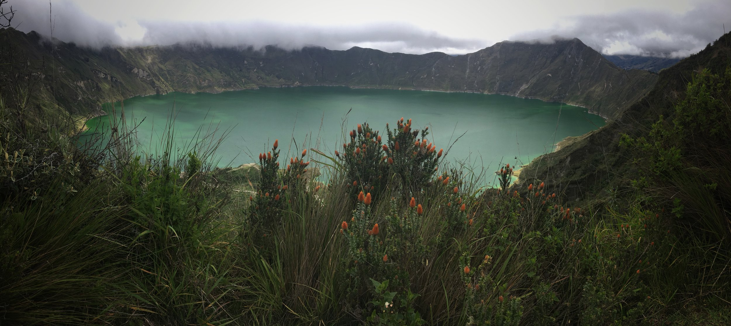 Quilotoa crater hiking and wildflowers
