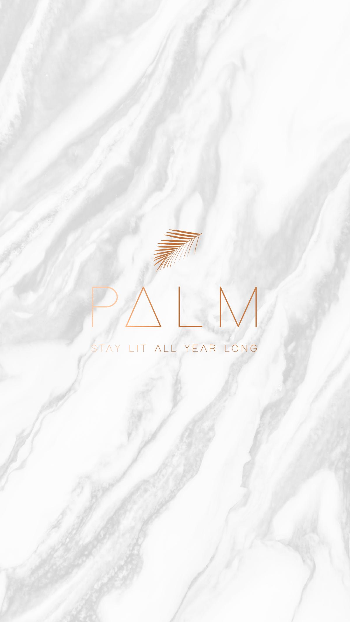 palm_logo.jpg